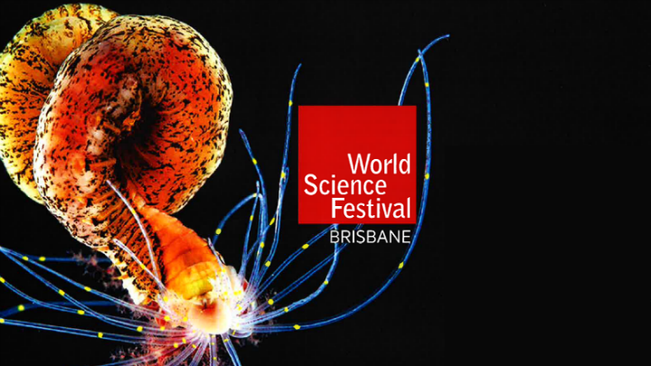 World  Science Festival image