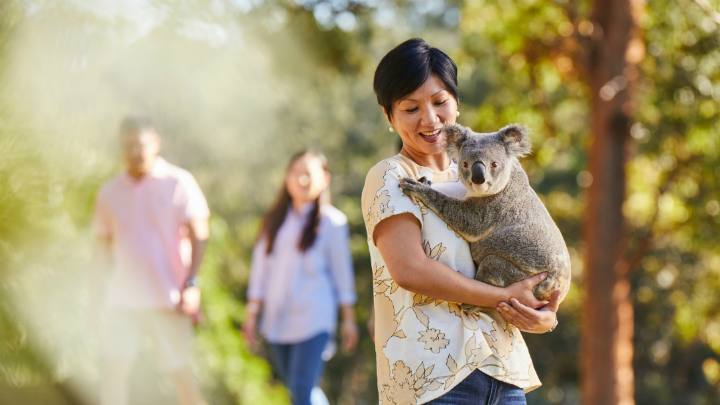 Lone Pine Koala Sanctuary Incentives
